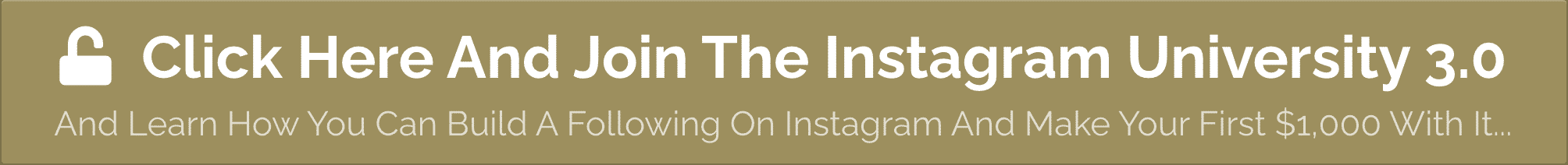 Instagram University 3.0 Button